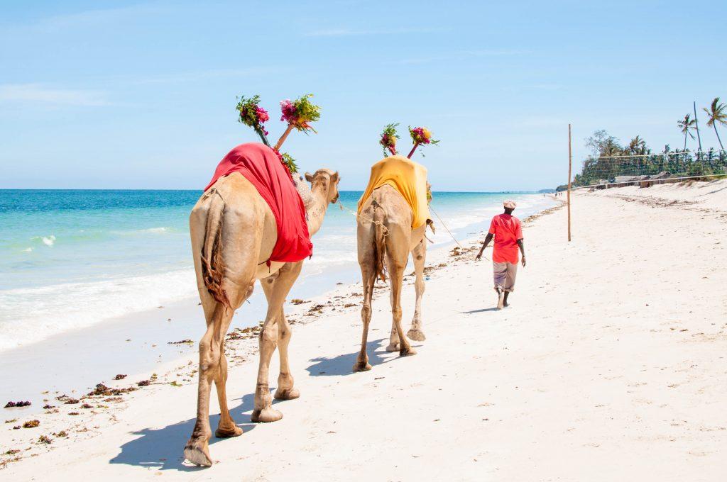 viajar por libre en las playas de Diani