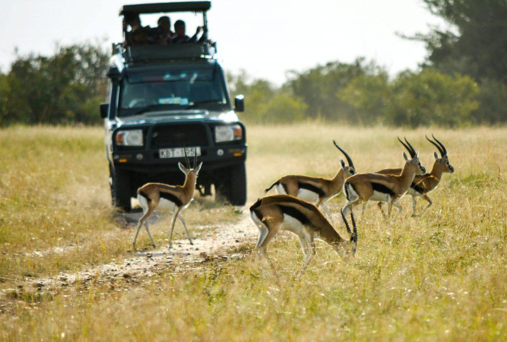 Reserva Nacional del Masai Mara en Kenia